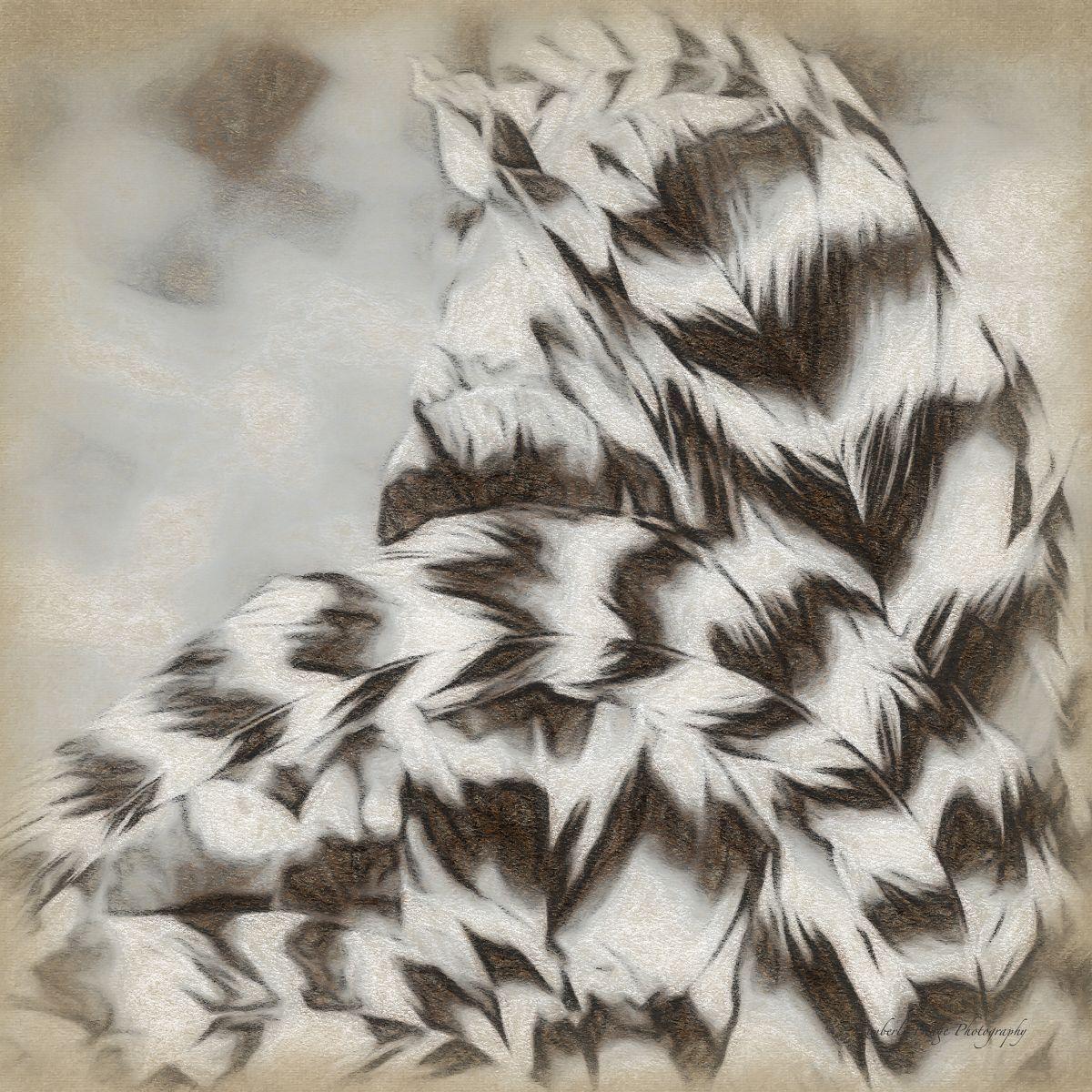 Thunder Feathers I