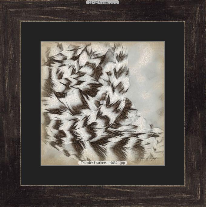 Thunder Feathers II showing single black mat